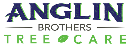 About Anglin Brothers Tree Care in Lakeland, FL - Contact us today!