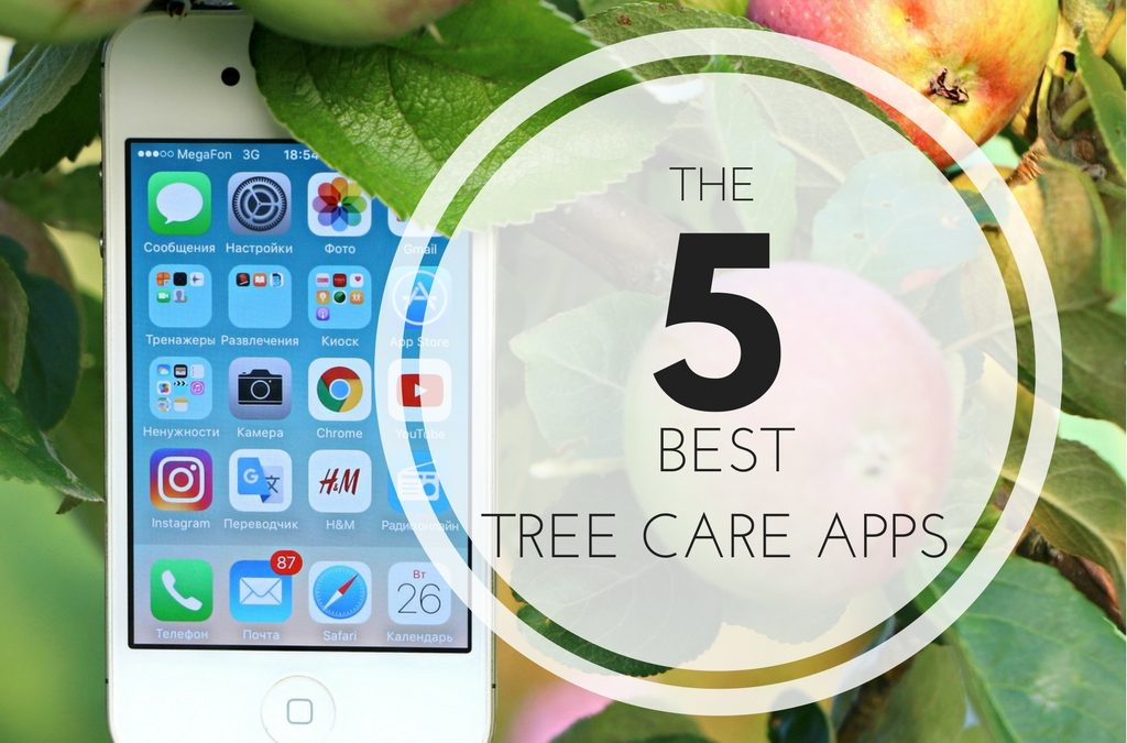 The 5 Best Tree Care Apps - Anglin Brothers Tree Service