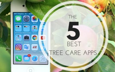 5 Best Tree Care Apps