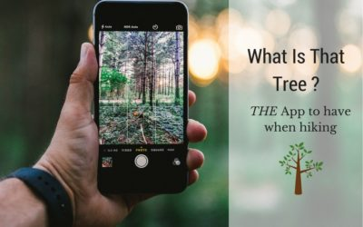 What Is That Tree App – Tree Identification Guide