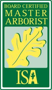 About - Anglin Brothers Tree Care - Lakeland, FL - Wyatt ...