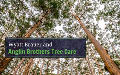 Wyatt & Anglin Brothers Tree Care