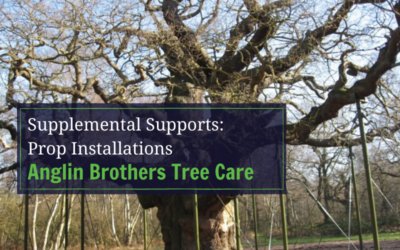 Supplemental Supports: Prop Installations